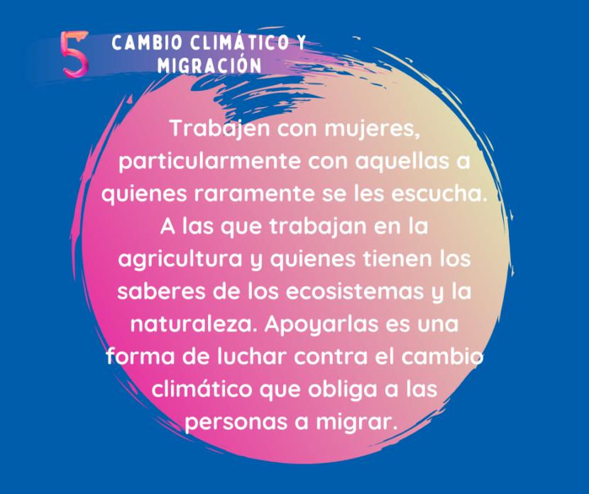 ccmspanish (2)